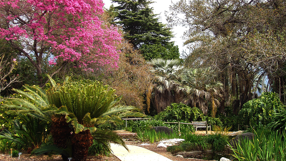 Los-Angeles-County-Arboretum-and-Botanical-Gardens
