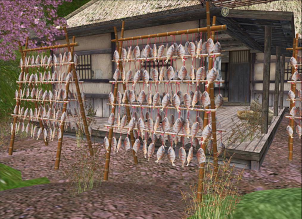 fish drying rack