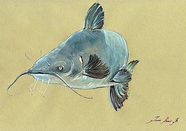 2-channel-catfish-fish-animal-watercolor-painting-juan-bosco