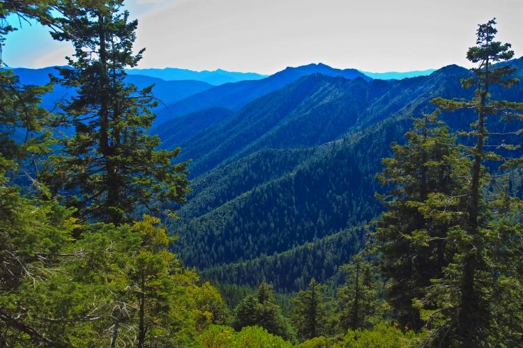 california trinity alps clay shannon licensed