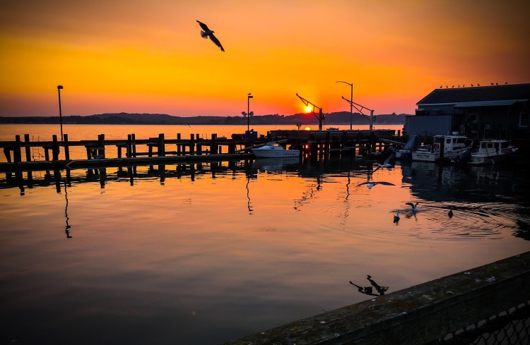 sunset-4922467_1920
